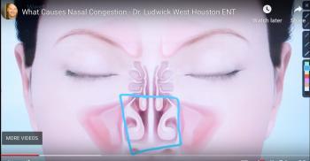 nasalcavitybox